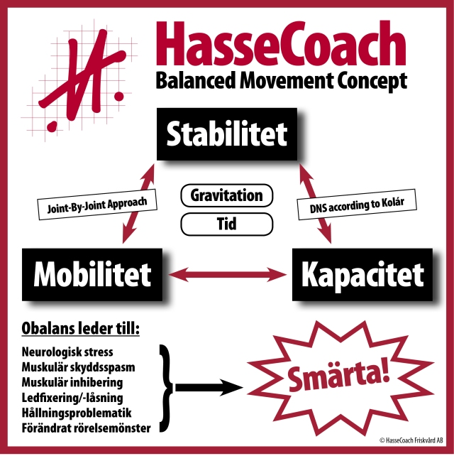 HasseCoach Concept Triangle